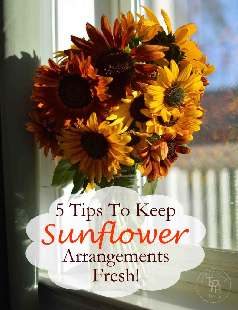5 tips on how to keep sunflowers alive and fresh. Black Bedroom Furniture Sets. Home Design Ideas